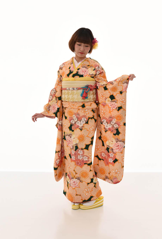 【振袖/着物/通販レンタル】古典レトロ 緑M